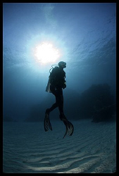diver silhouette, canon 5D, Wadi Lahmi 2007 by Dejan Sarman 